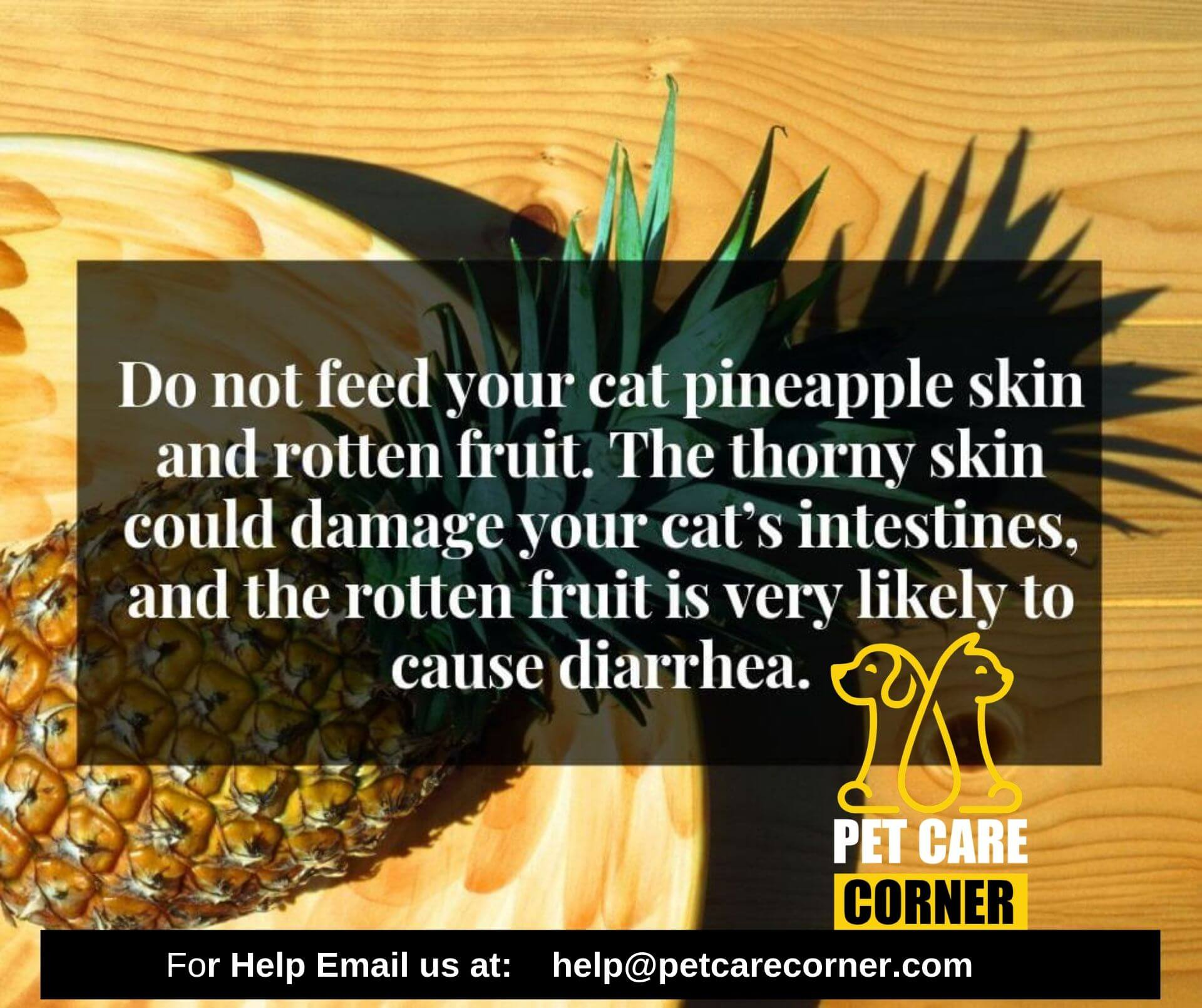 can cats eat pineapple leaves or skin