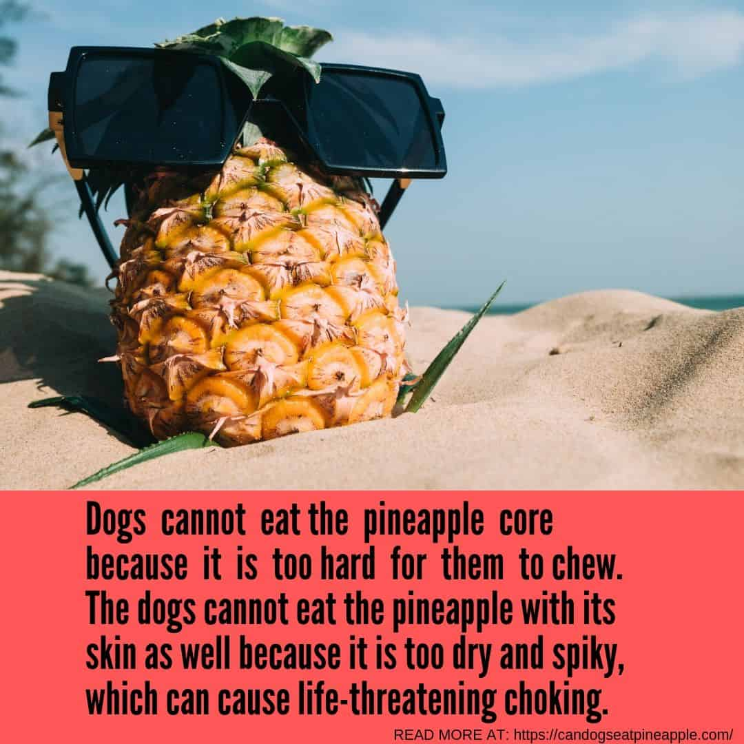 can dogs eat pineapple core